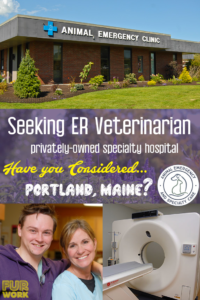 Animal Emergency and Specialty Care ER emergency Veterinarian job Portland Maine, ME