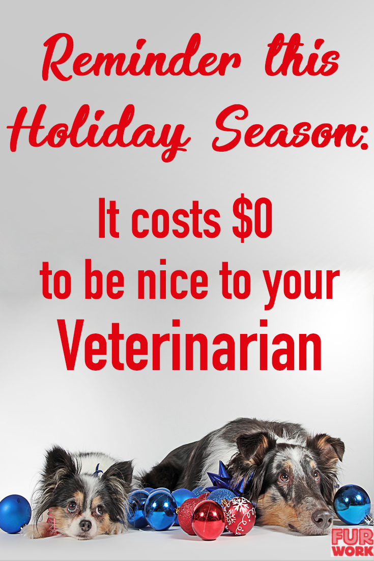 vet med humor. Be nice to veterinarian holiday season reminder. two dogs Christmas balls.
