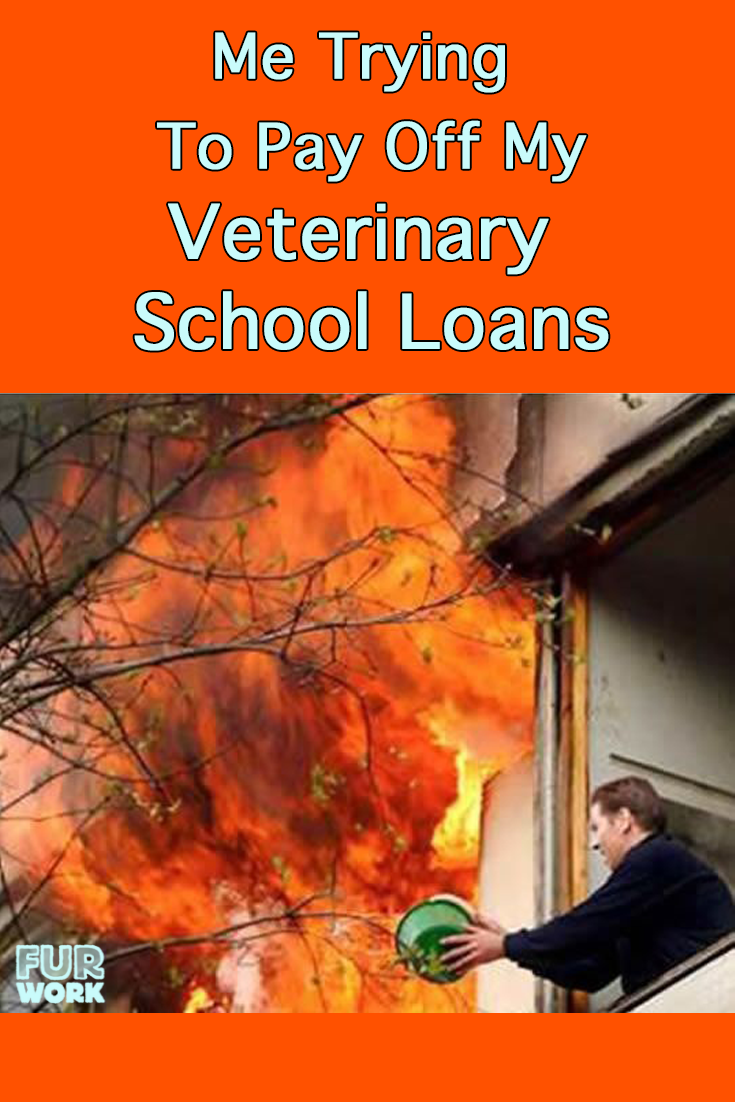 paying off vet school loan meme putting out fire furwork