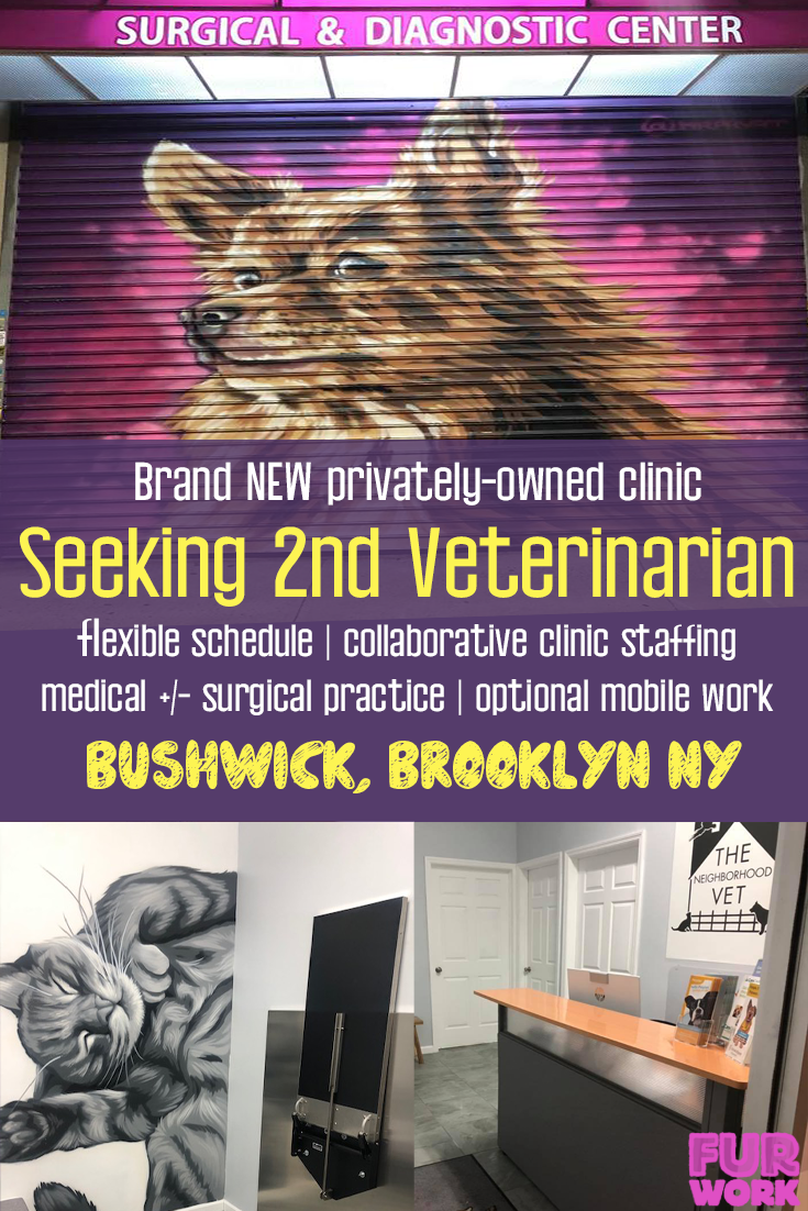 The Neighborhood Vet, New Clinic seeking 2nd Veterinarian Bushwick, Brooklyn, NY USA
