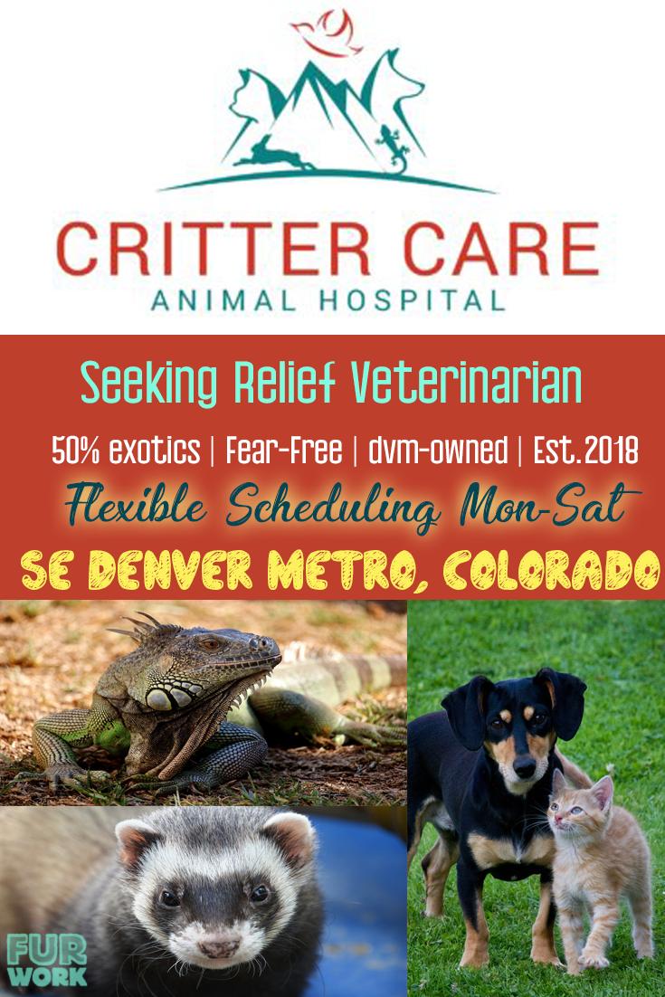Critter Care Animal Hospital Denver Colorado USA relief veterinarian dvm job 50% exotics ferret iguana dog cat flexible schedule
