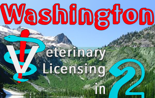 Washington state veterinarian licensing summary