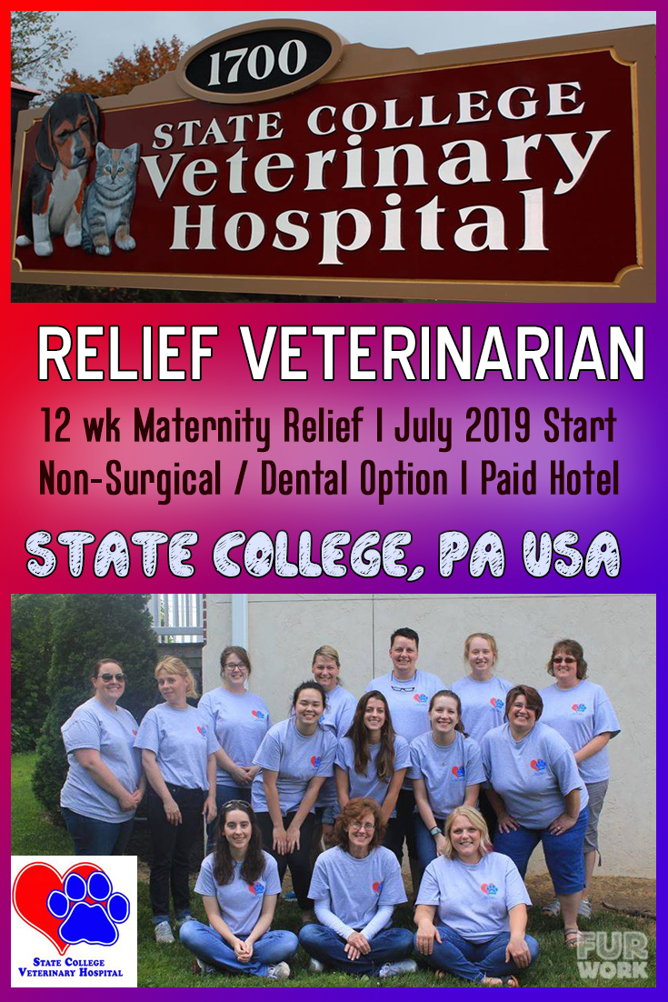 State College Veterinary Hospital, PA relief veterinarian July 2019