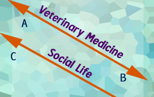 Veterinary medicine vs. social life parallel lines humorous meme preview