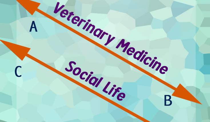 Veterinary medicine vs. social life parallel lines humorous meme preview