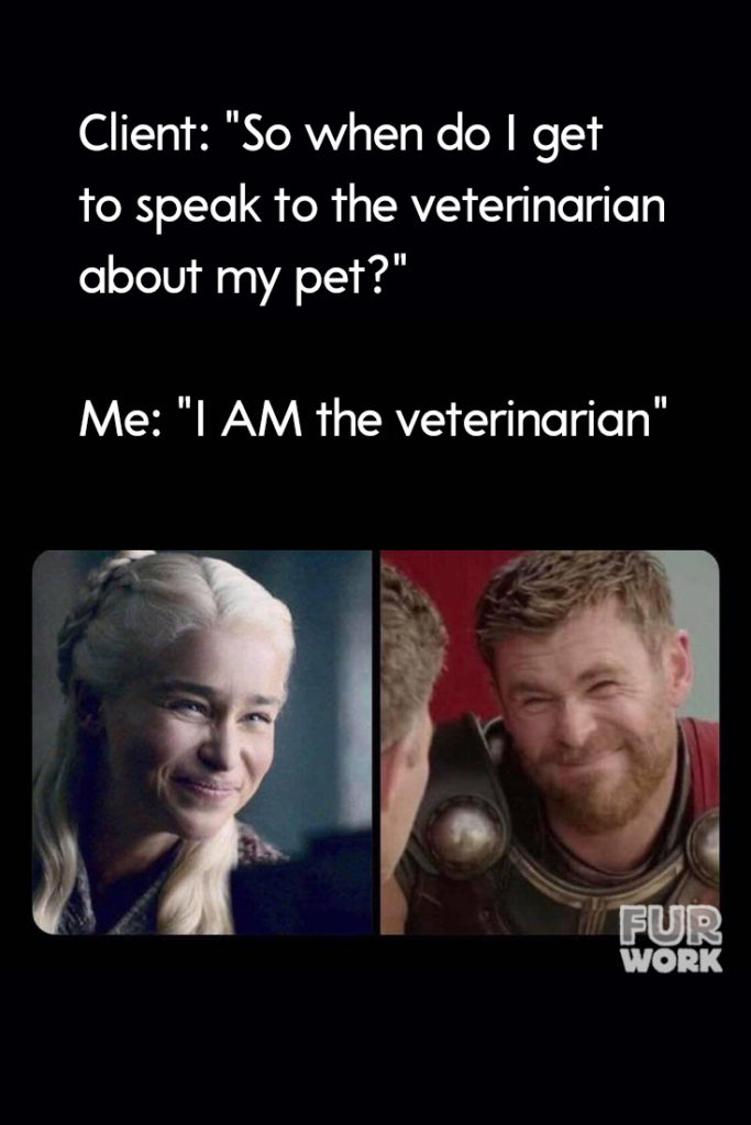 I AM the veterinarian game of thrones meme.