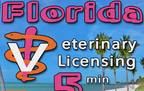 Florida Veterinary Licensing Summary Veterinarian FL