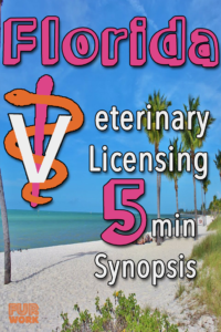 Florida veterinarian license summary