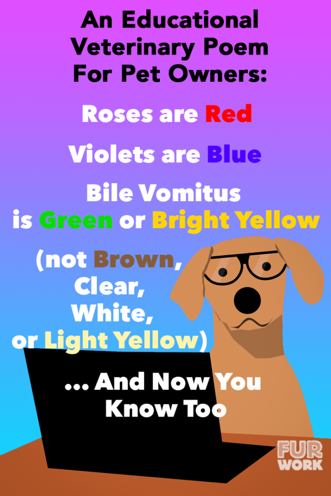 An Educational Veterinary Poem for Pet Owners, Roses are Red, Violets are Blue, Bile Vomitus is Green or Bright Yellow