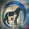 Deer Park Animal Hospital
